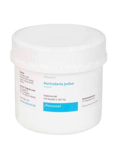 Auricularia judae - Judasohr