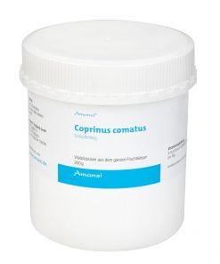Coprinus comatus Schopftintling Vitalpilzpulver
