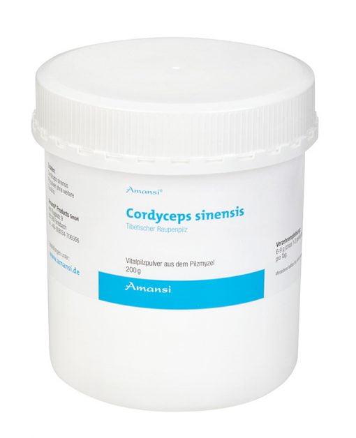 Cordyceps sinensis Raupenpilz