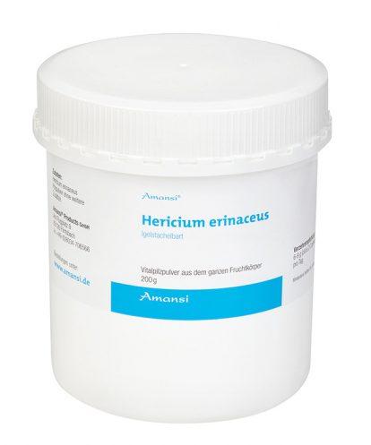 Hericium erinaceus - Igelstachelbart