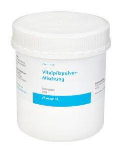 Vitalpilzpulver - Mischung