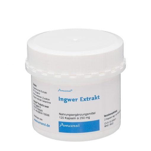 Ingwer Extrakt