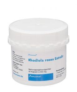 rhodiola rosea pflanzenextrakt