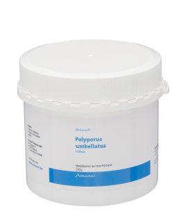 Polyporus Pulver