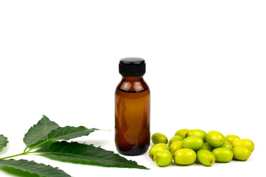 Niemöl - Neemöl in Flasche mit Früchten
